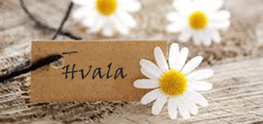 Cveće za zahvalnost