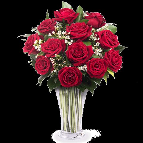 12 crvenih ruža-Hrvatska