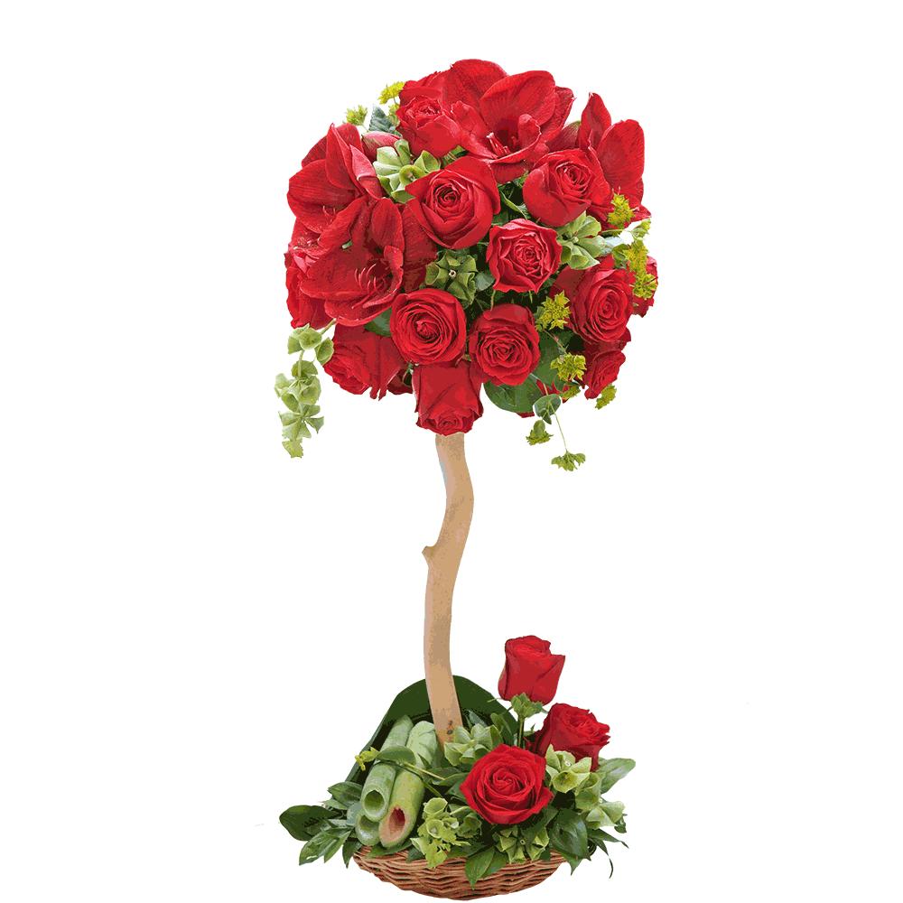 Drvo crvenih ruža