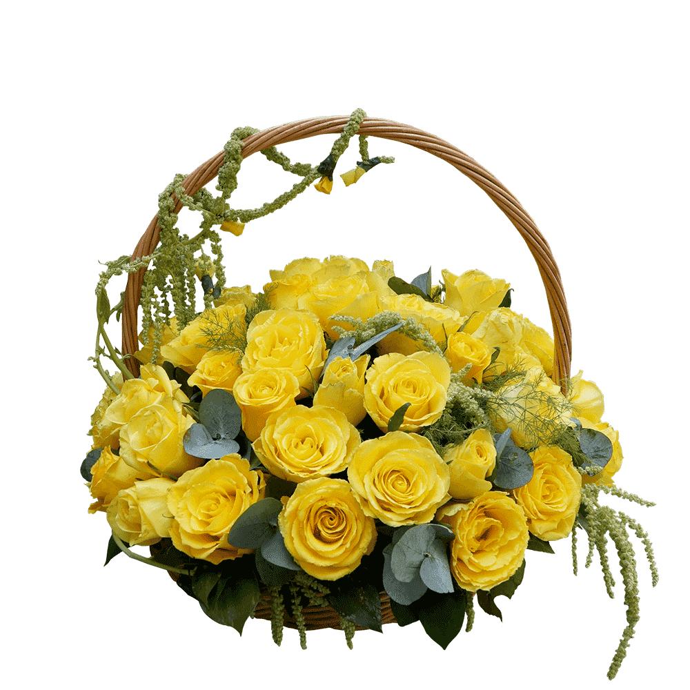 Žute ruže u korpi