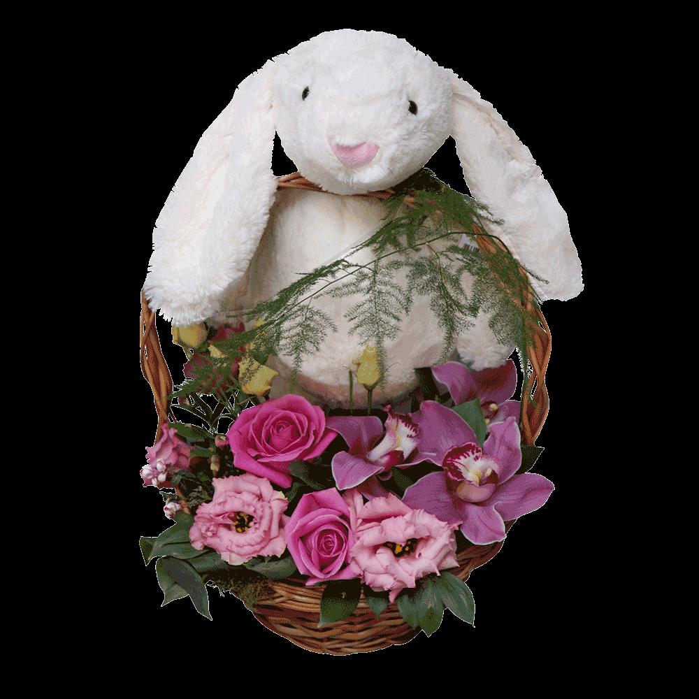 Zeka Srećko u cvetnoj korpi