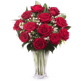 12 Crvenih ruža Madagaskar