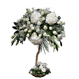 Jedan cvet, jedna želja…