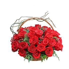 Crvene ruže