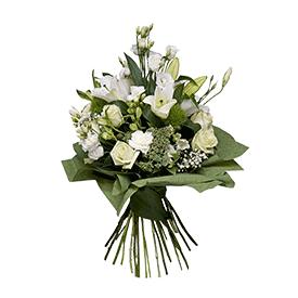 Savršeni beli cvetovi!