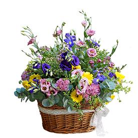 Za cvetno raspoloženje