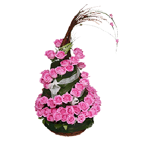 Ružičasti pogled