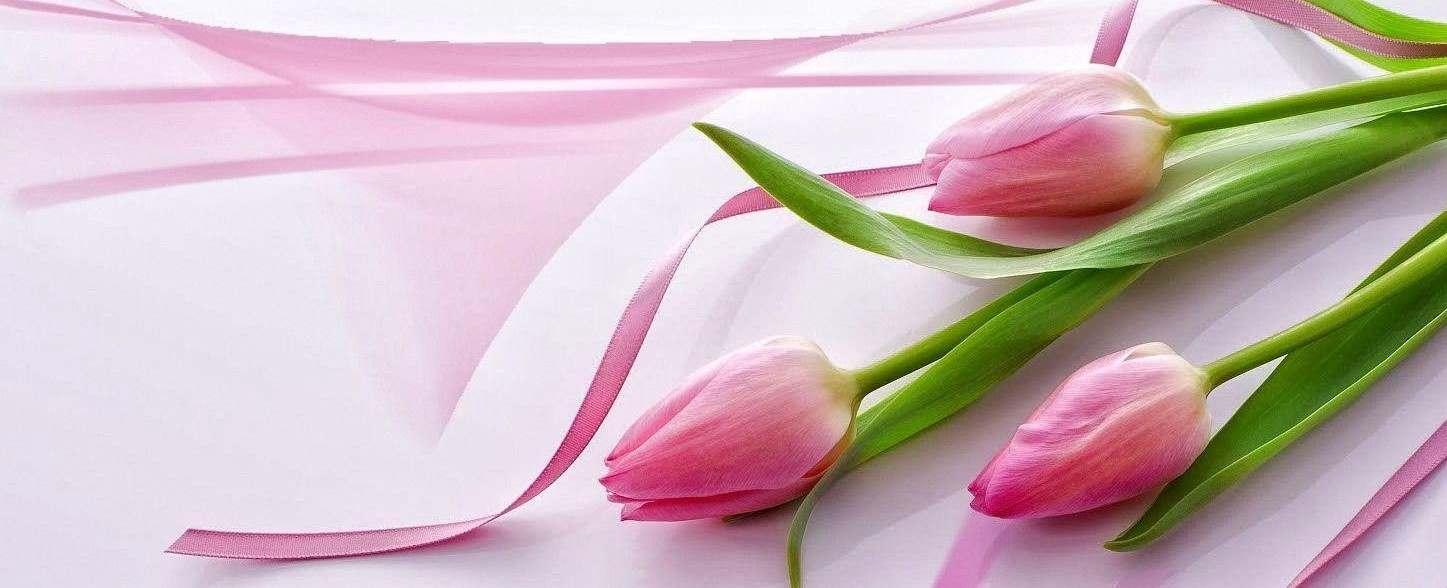 cvećara beograd dostava cveća