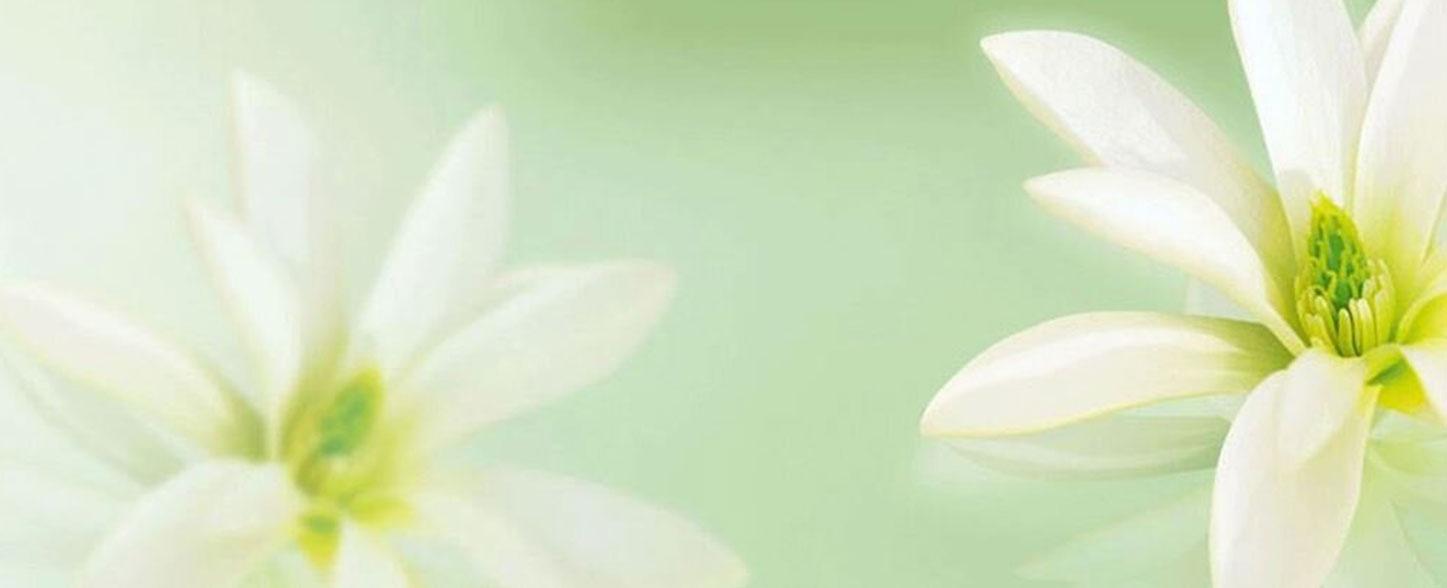 magnolia heder